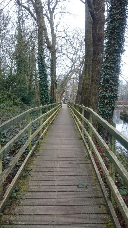 There's nothing quite like a magical wooden bridge that looks like it could be in a movie.