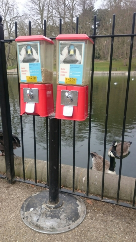 Great idea! For 20p you get a hand full of duck feed - judging by the way the ducks sidled up to me when I approached, they knew the deal!